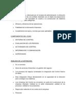 INFORME COSO.docx