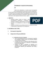 Programa de Seguridad y Salud Ocupacional