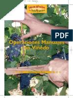 Viticultura Operaciones Manuales en Viñedo Poda Vid Viña