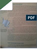 Poder das Pontas.pdf