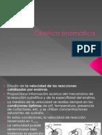 Enzimas 2 (3)