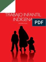 Trabajo Infantil y niñez indigena en el Ecuador