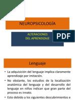 Clase Neuro Mayo