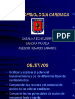Electro Fisio Lo