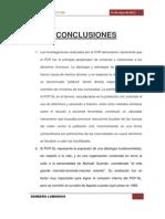 Conclusiones Original