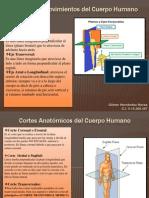 Ejes de los Movimientos del Cuerpo Humano.pptx