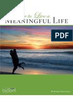 MeaningfulLife eBook