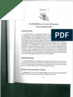 carbohidratos en los alimentos.pdf