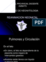 lauritareanimacionneonatalpresentacion-100828171346-phpapp02