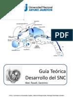 9- Desarrollo Del SNC