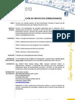 Programa_686_FORMULACIÓN DE PROYECTOS PRINCIPIANTES