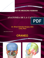 Anatomia de La Cabeza