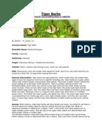Tiger Barbs.pdf