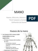 Anatomía de Mano.pptx