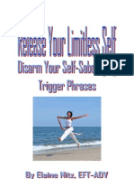 Release Your Limitless Self Excerpt