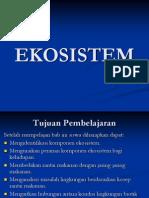 10. EKOSISTEM