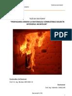 teza_doctorat_Valentin_Cublesan.pdf