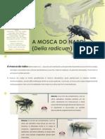Ficha Tecnica 109 2005