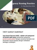 Dr. Elsye Maria Rosa, M.kep (Emergency_Nursing_Practice )