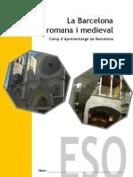 bcn_rom_med_eso_b (1).pdf