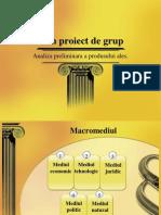 Plan Proiect de Grup