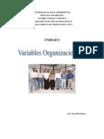 Variables Organ i Zac i on a Les