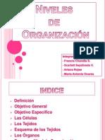 Niveles de Organizacion-FRANCITA