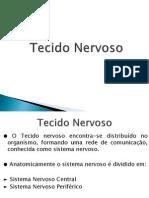 Tecido Nervoso.pptx