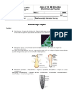 Aula n 10 Histofisiologia Vegetal (1)
