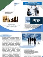 Brochure Tecnología en Gestión de Mercados V3