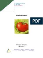 Ficha Tomate.pdf