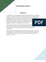 leptospirosis TEXTO 1