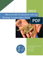 Microcredit Final Report