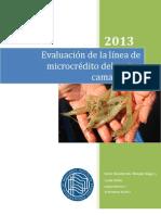 Informe Equipo Microcrédito Final