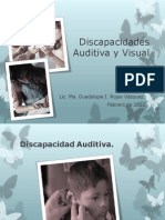 Discapacidades Auditiva y Visual