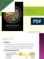Chapter 11 Mendelian Genetics I Genetics book