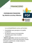 Analisis_Financiero (1)