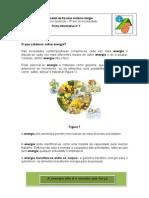Ficha Informativaenergia[1]
