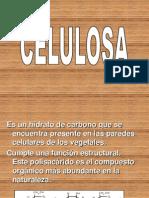 celulosa-090928085859-phpapp02