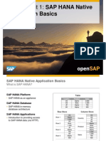 OpenSAP HANA1 Week 01 Developing Applications for SAP HANA Presentation (1)