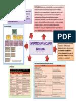 Enfermedad Vascular Cerebral