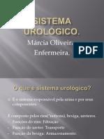 Sistema Urológico
