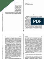 Estudios en Iconología - Introduccion (Panofski)