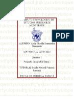 Química I MII–U4. - Proyecto integrador Etapa I