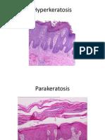 K - 2 Gambar Histopatologi (Ilmu Penyakit Kulit-Kelamin)