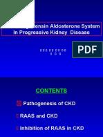 RAAS CKD Progression