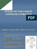 Bab 2 Struktur Dan Fungsi Jaringan Tumbuhan-2
