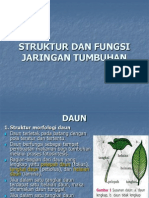 Bab 2 Struktur Dan Fungsi Jaringan Tumbuhan-4