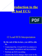 an Introduction to the 12 Lead Ecg