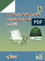 Madani Channel ke bary main ULMA o Shakhsiyat ke Tasuraat (PART;1)